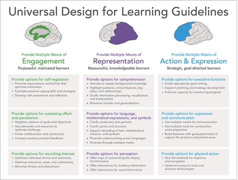 Universal Design for Learning Guidelines Chart View